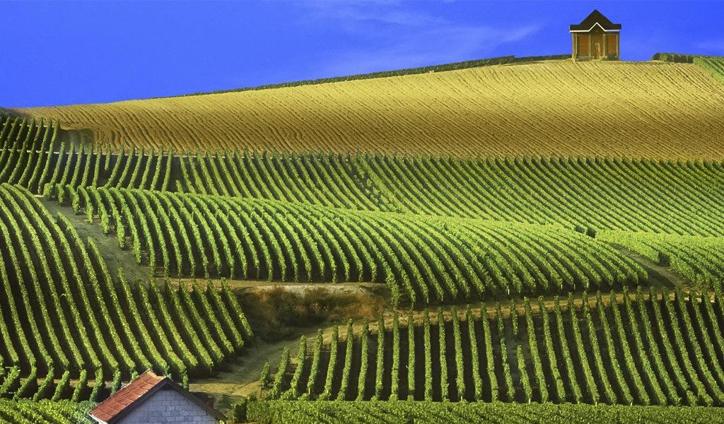 La región de Champagne