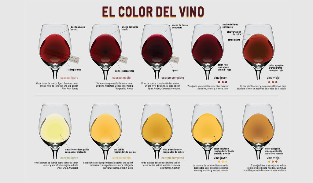 El color del Vino